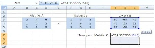 matriks11