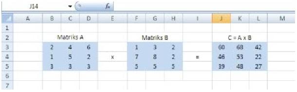 matriks13