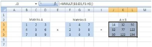 matriks6